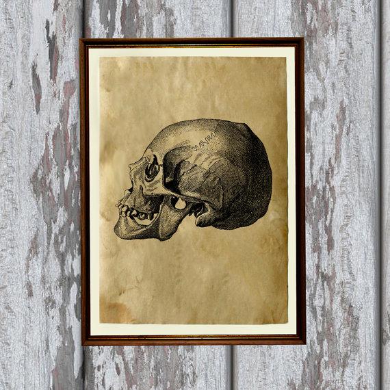 Skull Artkurka Etsy